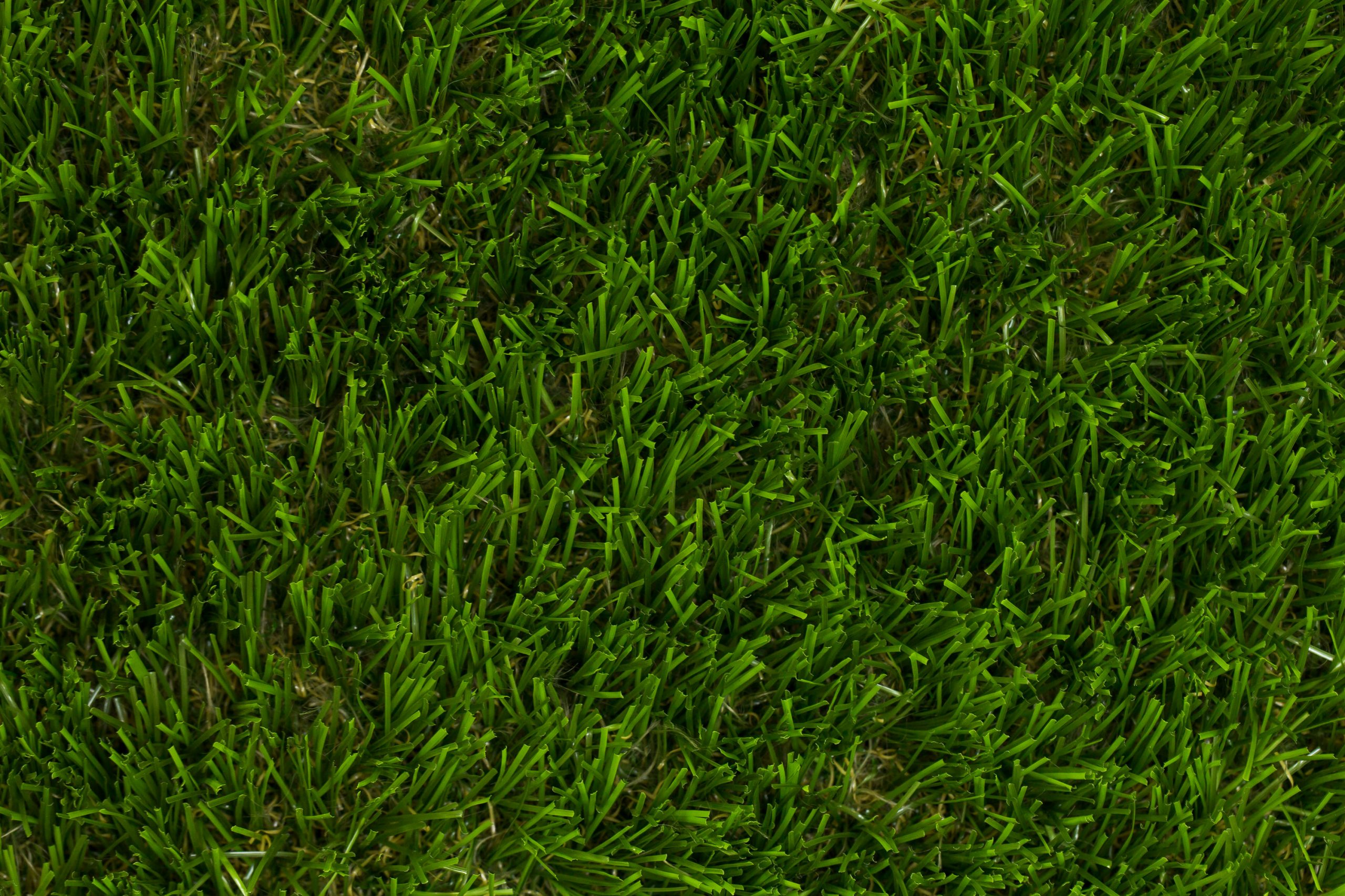 Florence Artificial Grass | buy at cheap-artificial-grass.uk