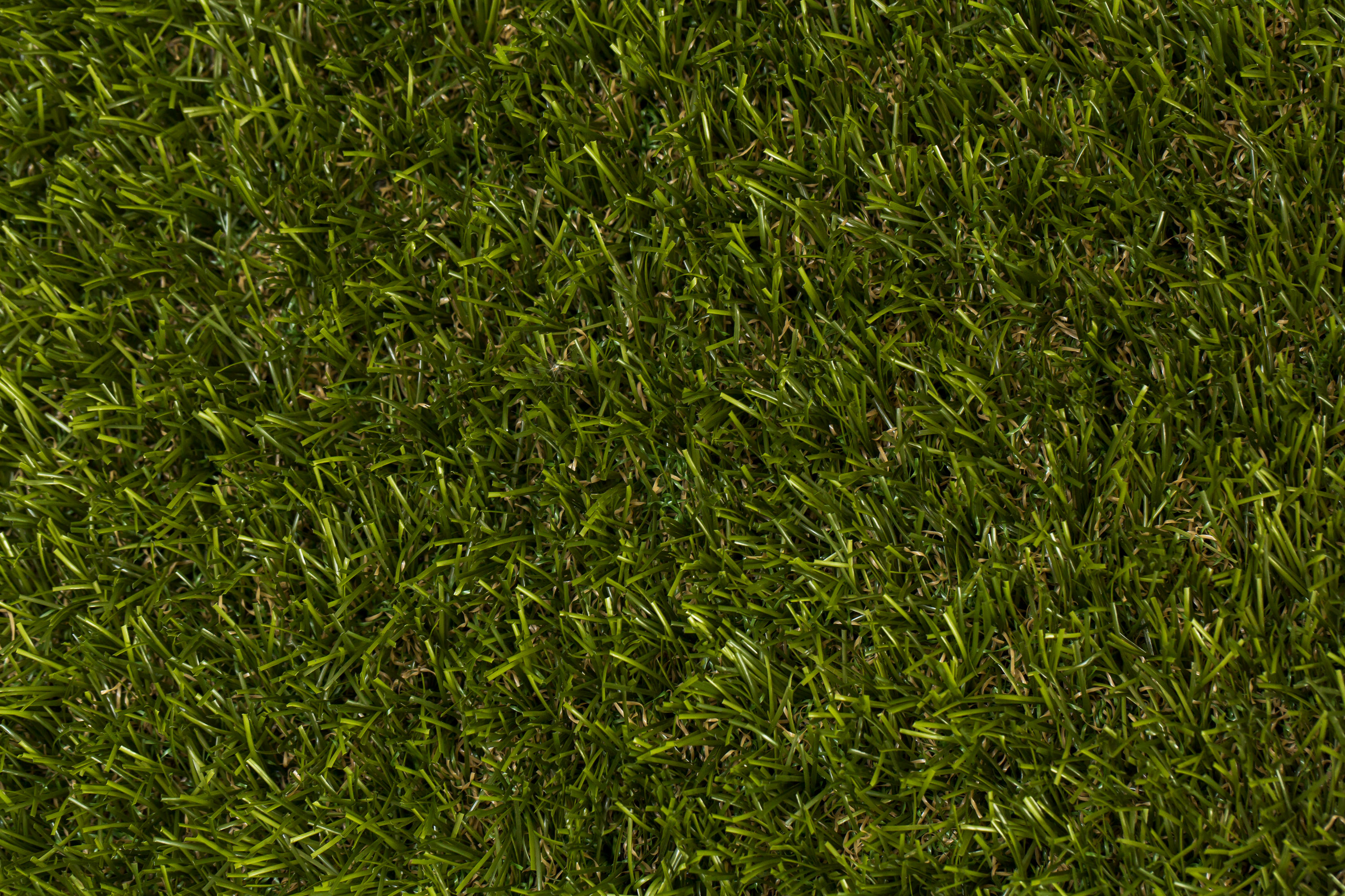 Stella Artificial Grass | buy at cheap-artificial-grass.uk